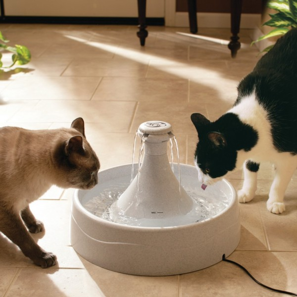 Drinkwell® 360 Plastic Cat and Dog Water Fountain