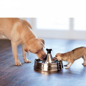 Drinkwell® 360 Stainless Steel  Cat and Dog Water  Fountain