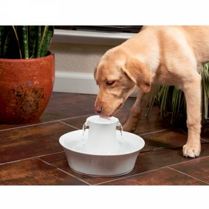 Drinkwell® Ceramic Avalon  Cat and Dog Water  Fountain