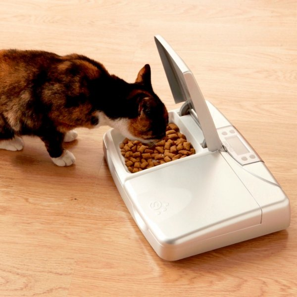 petPod™ Digital Standard Pet  Cat and Dog Water Feeder