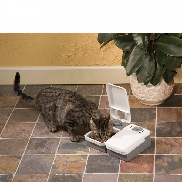 Petsafe Eatwell™ 2 Meal Pet  Cat and Dog Water Feeder