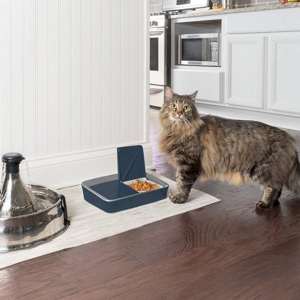 Petsafe Digital Two Meal Pet Feeder